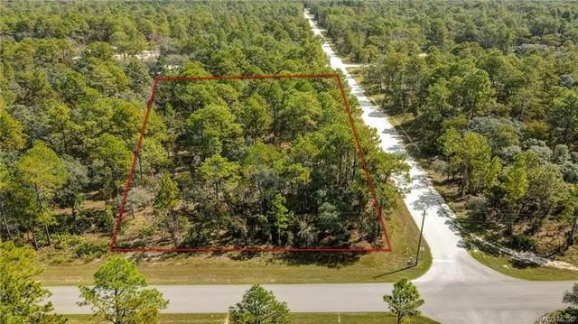 0 Mount Sparrow Road, Weeki Wachee, FL 34614 (MLS #806653) :: Plantation Realty Inc.