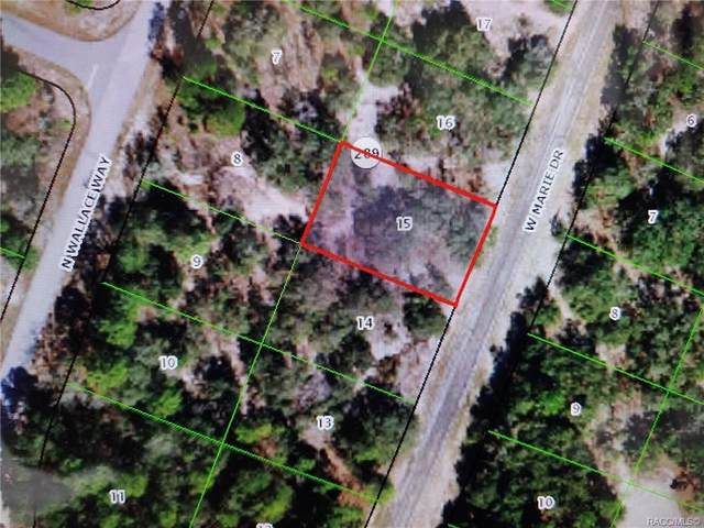3065 W Marie Drive, Citrus Springs, FL 34433 (MLS #806655) :: Plantation Realty Inc.