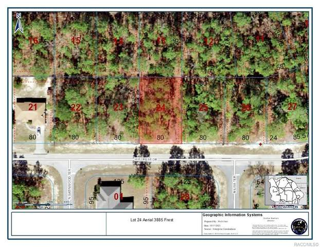 3885 W Forest Drive, Citrus Springs, FL 34433 (MLS #806687) :: Plantation Realty Inc.