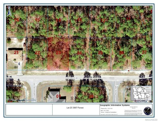 3897 W Forest Drive, Citrus Springs, FL 34433 (MLS #806688) :: Plantation Realty Inc.