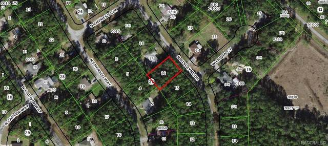 10126 N Biscayne Drive, Citrus Springs, FL 34434 (MLS #806706) :: Plantation Realty Inc.