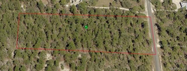 7282 N Damascus Avenue, Dunnellon, FL 34433 (MLS #806719) :: Plantation Realty Inc.
