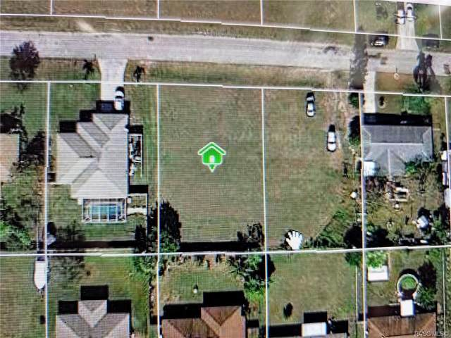 926 NE 12th Terrace, Cape Coral, FL 33909 (MLS #806733) :: Plantation Realty Inc.