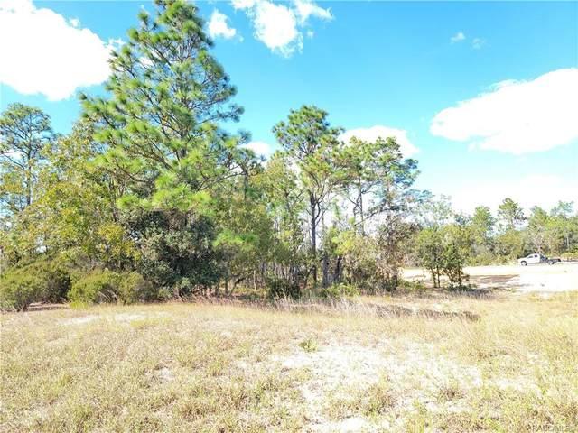 2805 W Arbutus Drive, Citrus Springs, FL 34433 (MLS #806735) :: Plantation Realty Inc.