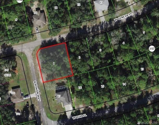 1044 W Geneva Place, Citrus Springs, FL 34434 (MLS #806737) :: Plantation Realty Inc.