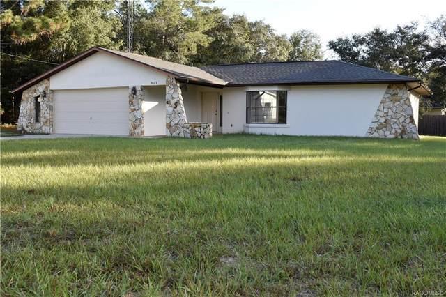 8623 N Amboy Drive, Citrus Springs, FL 34433 (MLS #806743) :: Plantation Realty Inc.