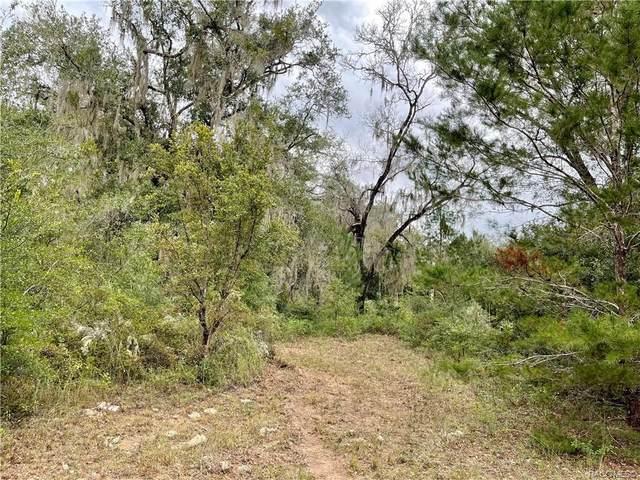 785 E Stockton Street, Beverly Hills, FL 34465 (MLS #806752) :: Plantation Realty Inc.