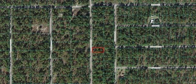 Lot 10 NW Buena Vista Road, Dunnellon, FL 34431 (MLS #806756) :: Plantation Realty Inc.