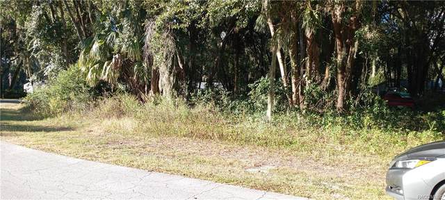 1075 S Chateau Point, Inverness, FL 34450 (MLS #806760) :: Plantation Realty Inc.