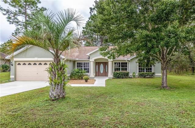 17 Eugenia Court N, Homosassa, FL 34446 (MLS #806777) :: Plantation Realty Inc.