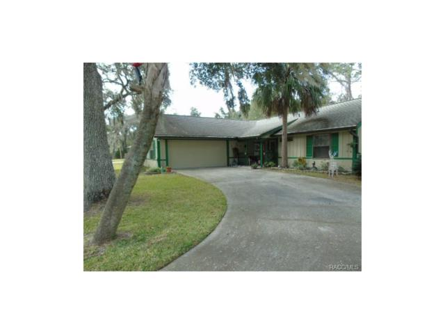 11237 W Cedar Lake Drive, Crystal River, FL 34428 (MLS #RA753381) :: Plantation Realty Inc.