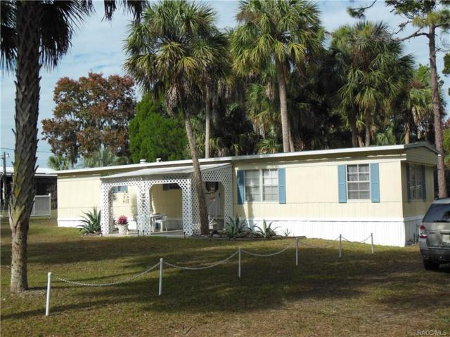 8587 W Dixieland Street, Homosassa, FL 34448 (MLS #RA753391) :: Plantation Realty Inc.