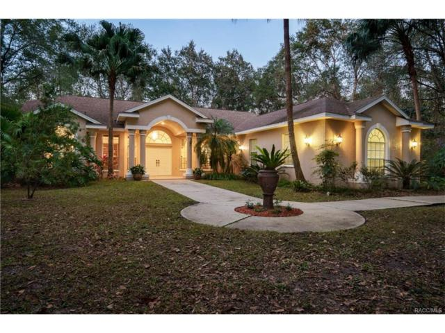 27109 Country Oak Drive, Brooksville, FL 34602 (MLS #RA753401) :: Plantation Realty Inc.
