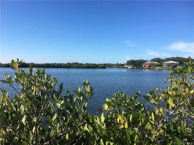 14517 W Trachel Court, Crystal River, FL 34429 (MLS #RA753412) :: Plantation Realty Inc.