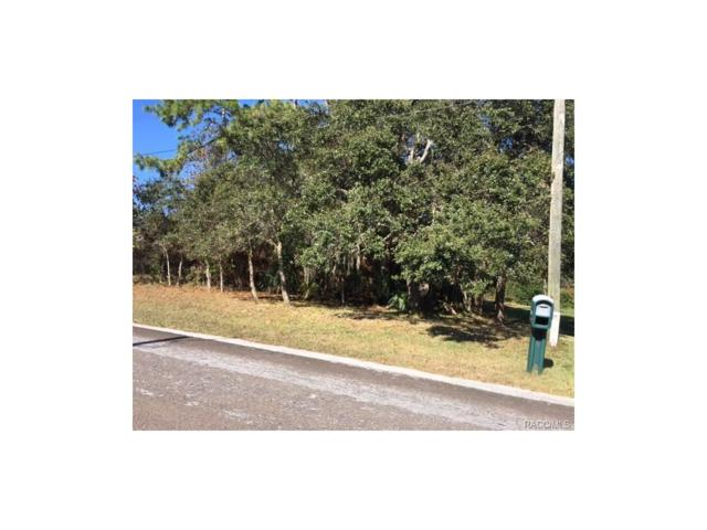 5513 W Paul Bryant Drive, Crystal River, FL 34429 (MLS #RA753418) :: Plantation Realty Inc.