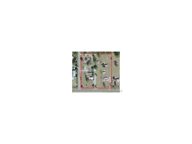 6735 Cardinal-Lewdingar Drive, Homosassa, FL 34446 (MLS #705053) :: Plantation Realty Inc.
