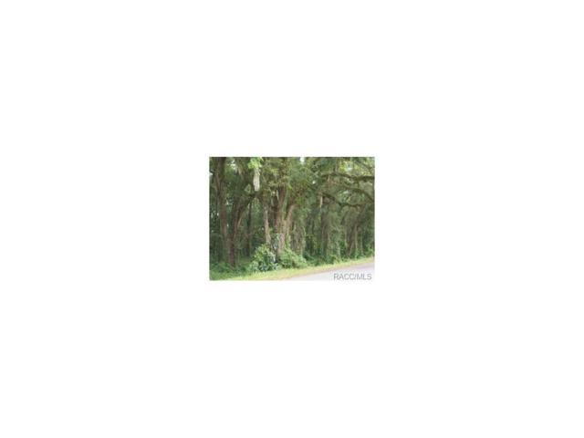 3400 E Lake Nina Drive, Inverness, FL 34453 (MLS #710924) :: Plantation Realty Inc.