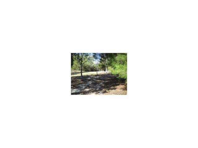 8554 SW 202nd Avenue, Dunnellon, FL 34431 (MLS #711409) :: Plantation Realty Inc.