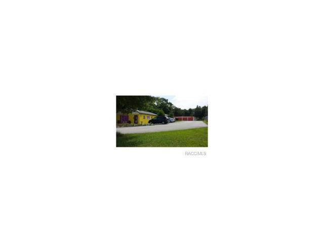 2089 N Lecanto Highway, Lecanto, FL 34461 (MLS #711579) :: Plantation Realty Inc.
