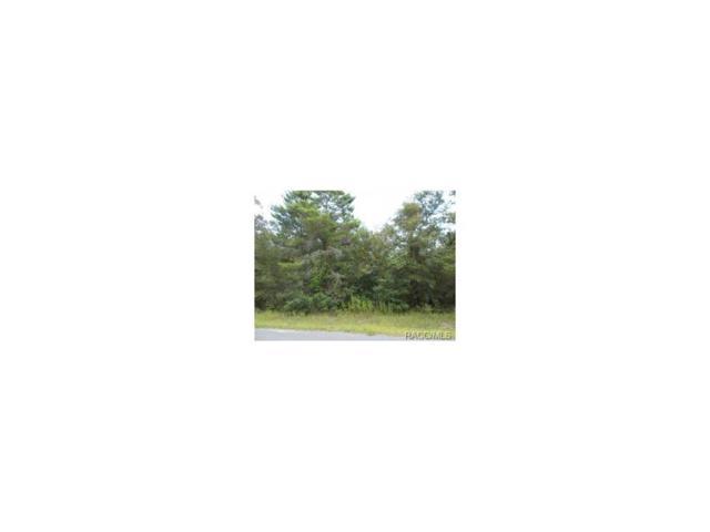 4380 N Indianhead Road, Hernando, FL 34442 (MLS #712084) :: Plantation Realty Inc.