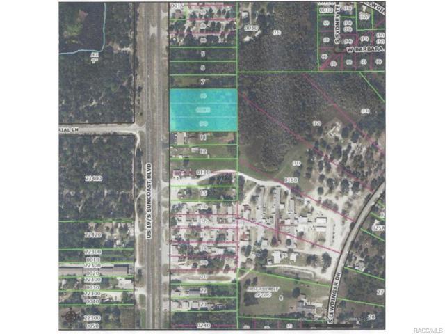 6137 S Suncoast Boulevard, Homosassa, FL 34446 (MLS #713555) :: Plantation Realty Inc.