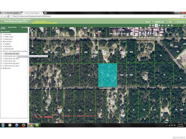 4582 W Sandy Hill Street, Lecanto, FL 34461 (MLS #714851) :: Plantation Realty Inc.