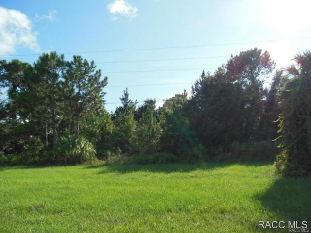 5446 S Suncoast Boulevard, Homosassa, FL 34446 (MLS #721054) :: Plantation Realty Inc.