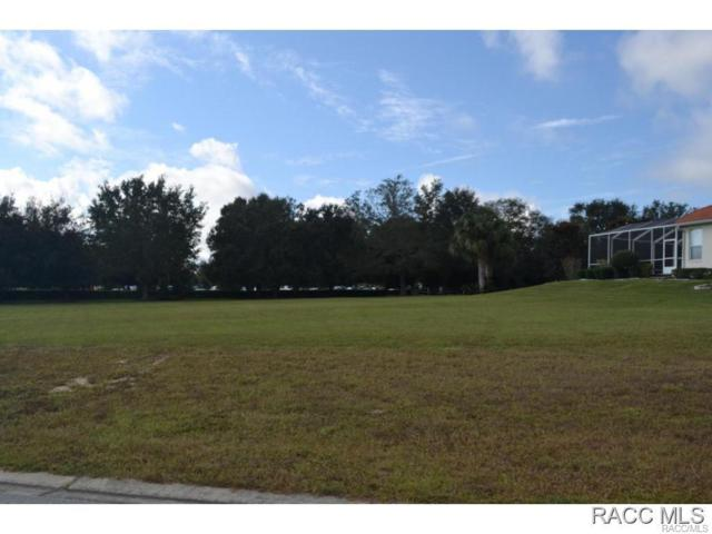 202 W Redsox Path, Hernando, FL 34442 (MLS #722158) :: Plantation Realty Inc.