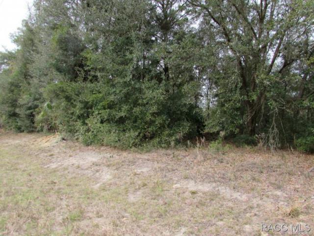 7629 W Dunnellon Road, Dunnellon, FL 34433 (MLS #723673) :: Plantation Realty Inc.