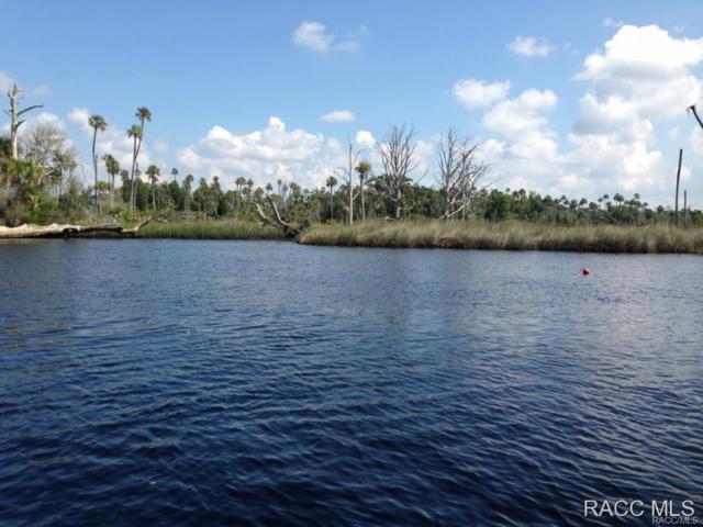 0 Yankeetown Island, Yankeetown, FL 34498 (MLS #723860) :: Plantation Realty Inc.