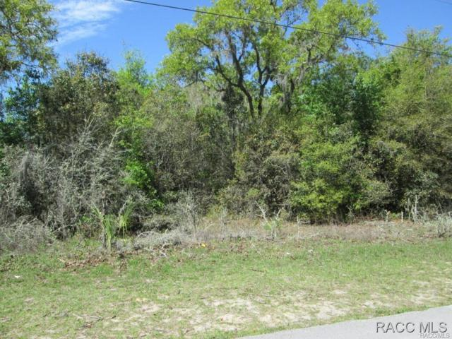 1017 Russell Avenue, Inverness, FL 34453 (MLS #725681) :: Plantation Realty Inc.