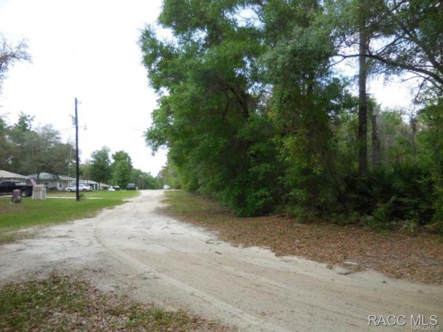 8228 W Kennedy Lane, Crystal River, FL 34428 (MLS #725975) :: Plantation Realty Inc.