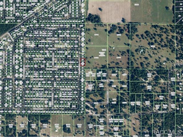8537 N Hatfield Terrace, Crystal River, FL 34428 (MLS #726191) :: Plantation Realty Inc.