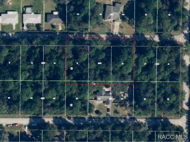 9604 W Laurel Oak Lane, Crystal River, FL 34428 (MLS #726192) :: Plantation Realty Inc.