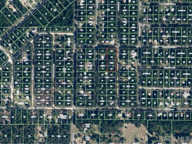 8384 N Ocoee Terrace, Crystal River, FL 34428 (MLS #726193) :: Plantation Realty Inc.
