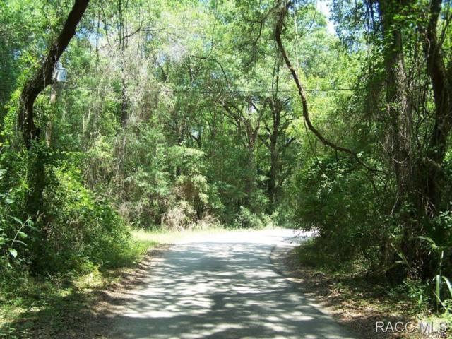 7528 N Palm Oak Drive, Hernando, FL 34442 (MLS #726951) :: Plantation Realty Inc.