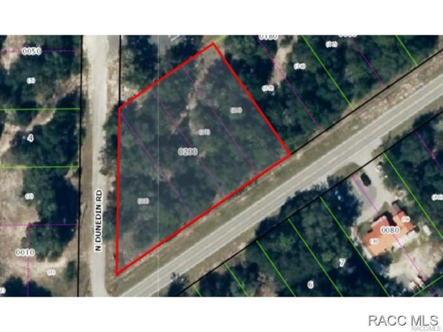 7653 W Dunnellon Road, Dunnellon, FL 34433 (MLS #727146) :: Plantation Realty Inc.