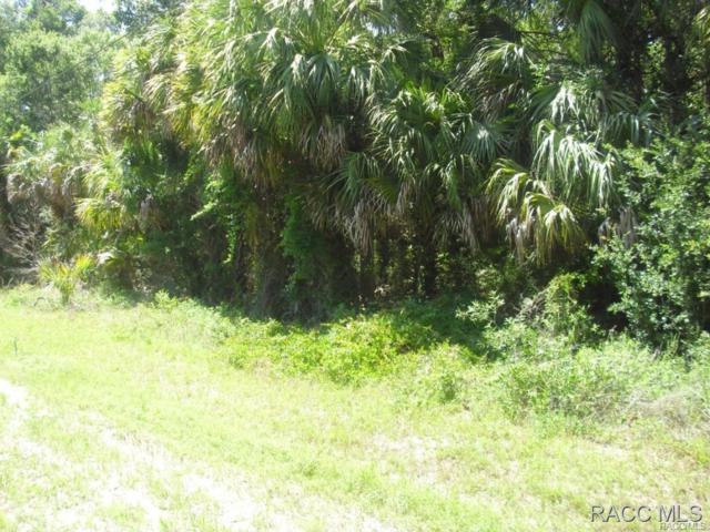 0 193rd Place, Yankeetown, FL 34498 (MLS #727357) :: Plantation Realty Inc.