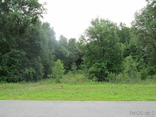 1345 E Silver Thorn Loop, Hernando, FL 34442 (MLS #727408) :: Plantation Realty Inc.