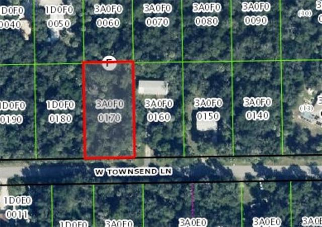 11091 W Townsend Lane, Homosassa, FL 34448 (MLS #750652) :: Plantation Realty Inc.