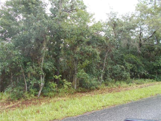 2051 E Newhaven Street, Inverness, FL 34442 (MLS #751084) :: Plantation Realty Inc.