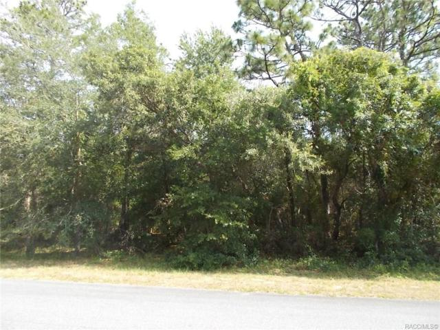 2055 E Marcia Street, Inverness, FL 34442 (MLS #751086) :: Plantation Realty Inc.