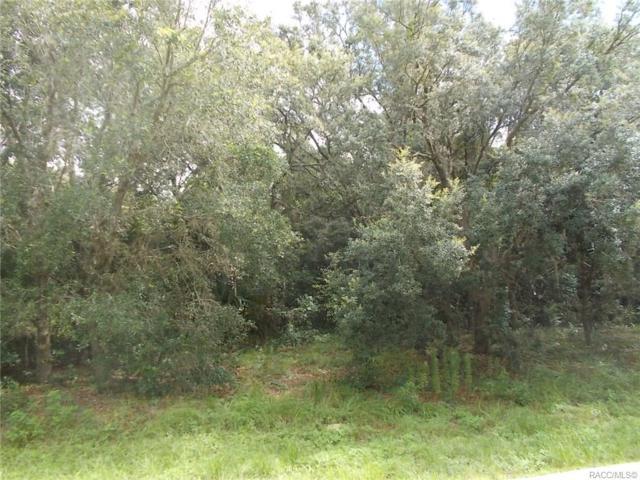 783 W Massachusetts Street, Hernando, FL 34442 (MLS #751313) :: Plantation Realty Inc.