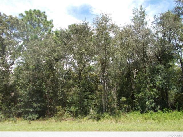 1675 W 0LYMPIA Street, Hernando, FL 34442 (MLS #751467) :: Plantation Realty Inc.