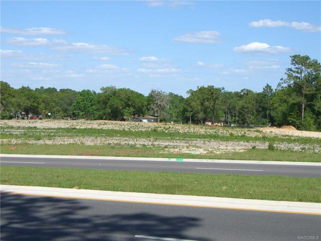2247 N Lecanto Highway, Lecanto, FL 34461 (MLS #753591) :: Plantation Realty Inc.
