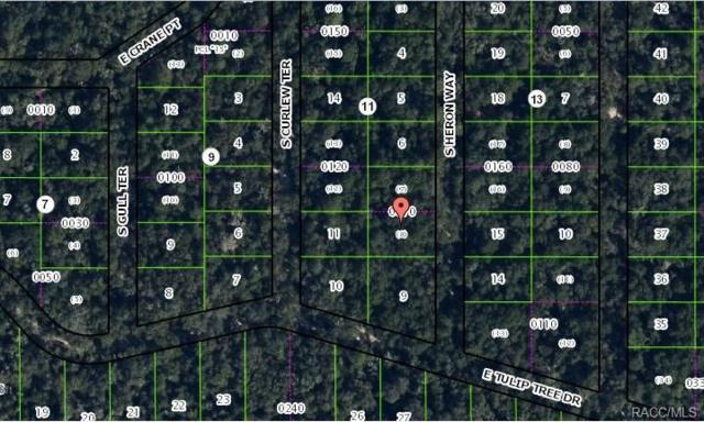 4012 S Heron Way, Inverness, FL 34450 (MLS #756949) :: Plantation Realty Inc.