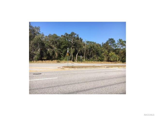 1435 E Norvell Bryant Highway, Hernando, FL 34442 (MLS #760943) :: Plantation Realty Inc.