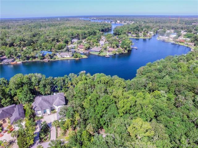 9580 W River Holly Path, Homosassa, FL 34448 (MLS #761241) :: Plantation Realty Inc.