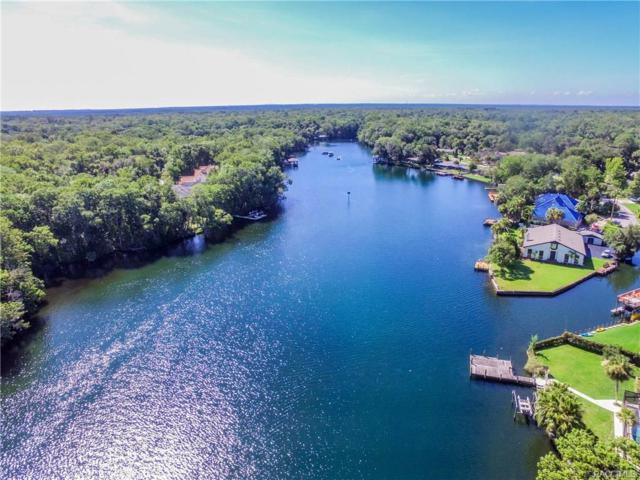 9590 W River Holly Path, Homosassa, FL 34448 (MLS #761332) :: Plantation Realty Inc.