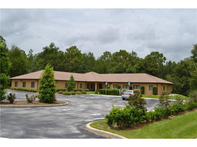 2671 W Norvell Bryant Highway, Lecanto, FL 34461 (MLS #761814) :: Plantation Realty Inc.